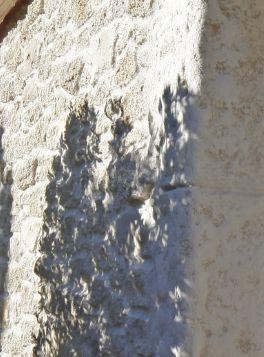 Mur extérieur imitation pierre blanche